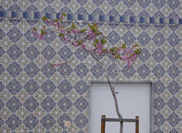Tiles in Cabanas, 11 April 2012