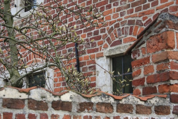 Groot Begijnhof, Leuven, 7 March 2013