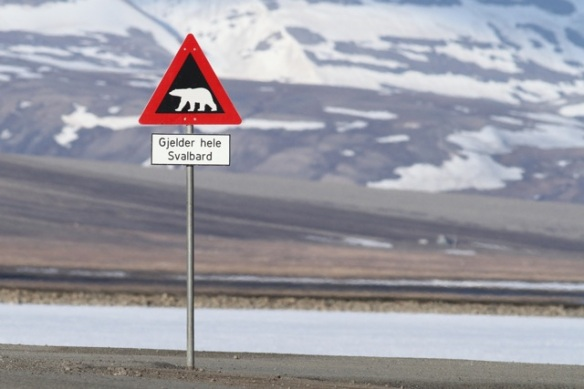 Polar bear traffic sign, Svalbard, 7 June 2013