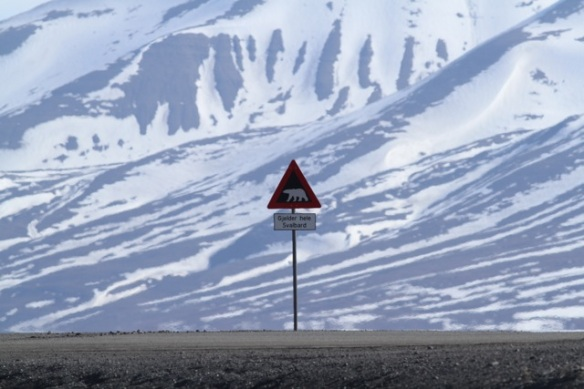 Polar bear traffic sign, Svalbard, 8 June 2013