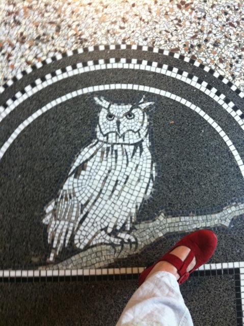 Eagle owl, Rijksmuseum