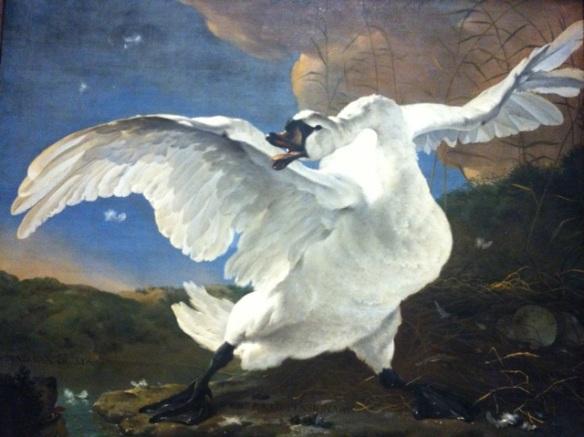 Jan Asselijn, The Threatened Swan, Rijksmuseum