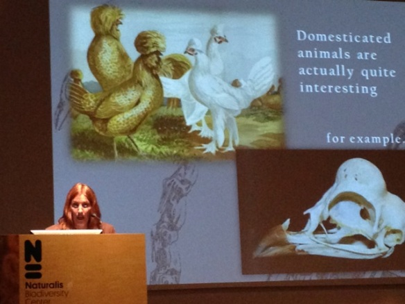 Katrina van Grouw, domestic animals, 25 May 2014