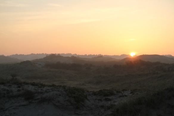 Meijendel sunrise, 17 May 2014