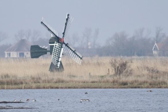 Dijkmanshuizen, 10 March 2016