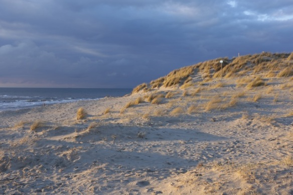 Texel beach, on 5 March 2016