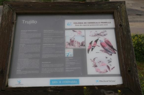 Trujillo, lesser kestrels sign, 11 April 2016