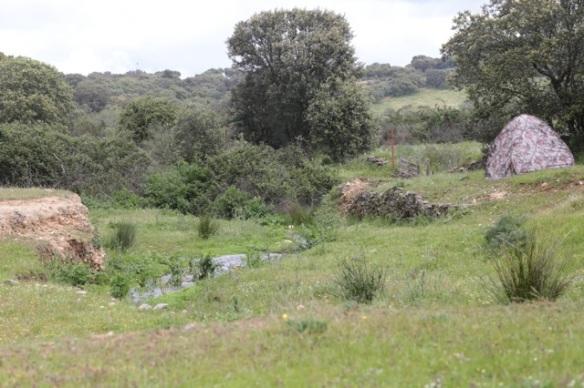 Bee-eater colony and hide, near Jaraicejo, 23 April 2016