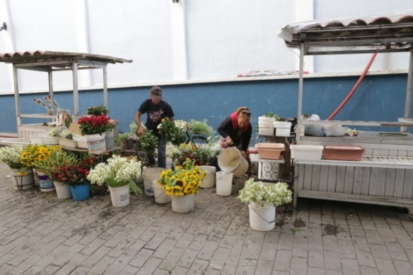 Flower shop, 9 March 2017