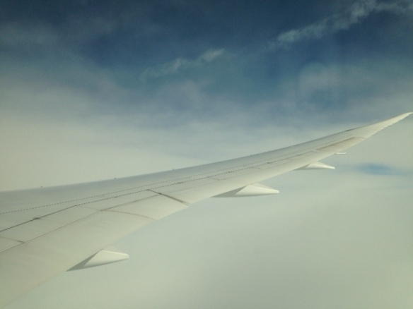 Plane wing, 5 March 2017