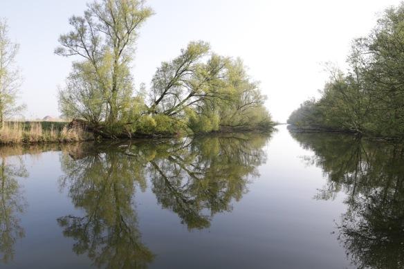 Esscheplaat river, 9 April 2017
