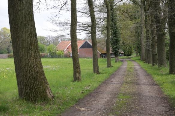 Farm, 3 May 2015