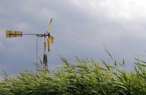 Windmill, 31 July 2017