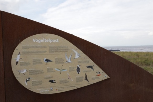 Katwijk aan Zee, bird migration counting point, 17 September 2017