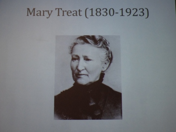 Mary Treat, 11 August 2017