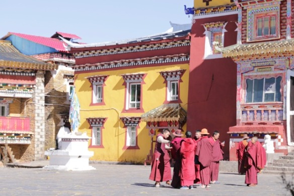 Pamuling monastery, monks, 3 April 2018