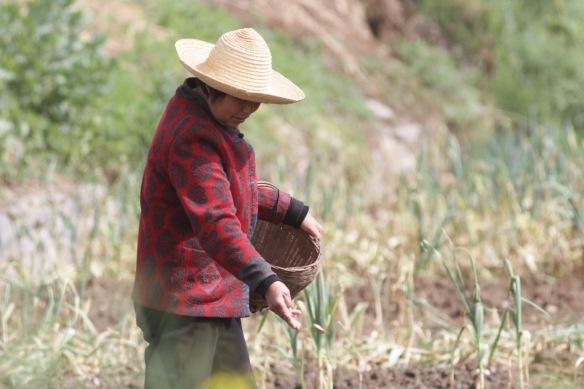 Farm woman, 6 April 2018