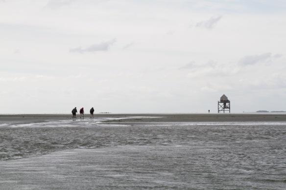 Engelsmanplaat sandbank, 8 September 2018