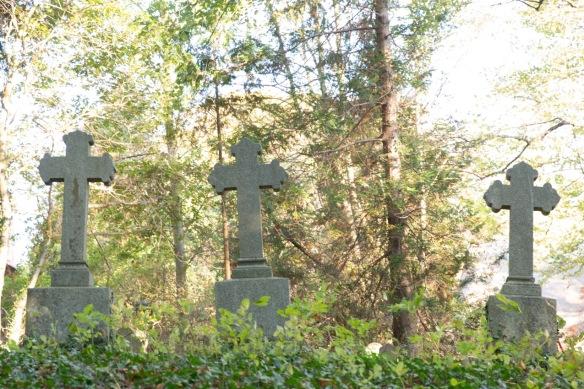 Churchyard, 11 October 2018