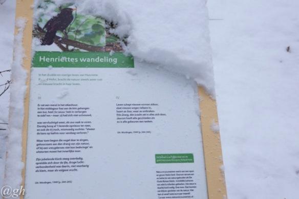 Blackbird poem, 22 January 2019