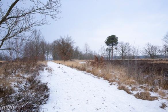 De Reten-Oude Buisse Heide border, 24 January 2019