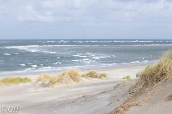 Beach, Terschelling 28 September 2019