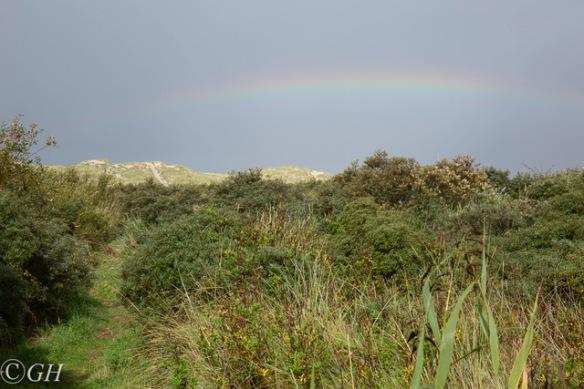 Rainbow, 27 September 2019