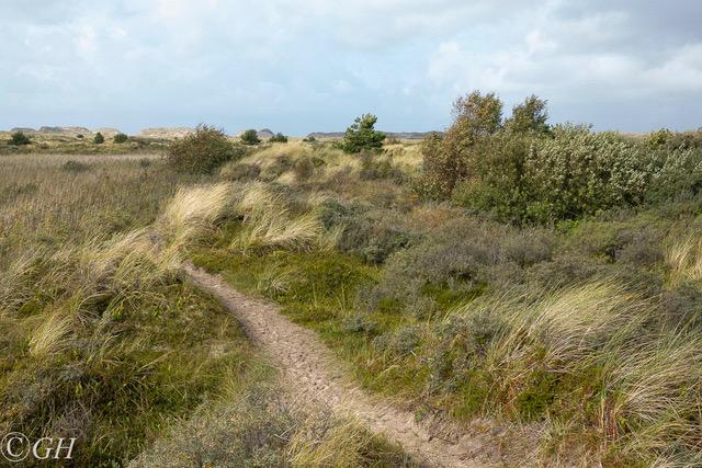 Sand dunes, on 27 September 2019