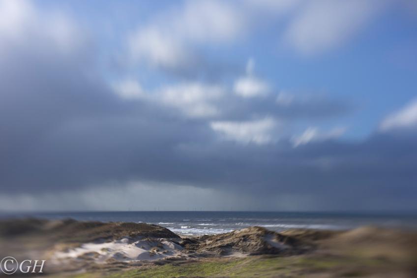 Schoorl sand dunes and sea, 18 January 2020