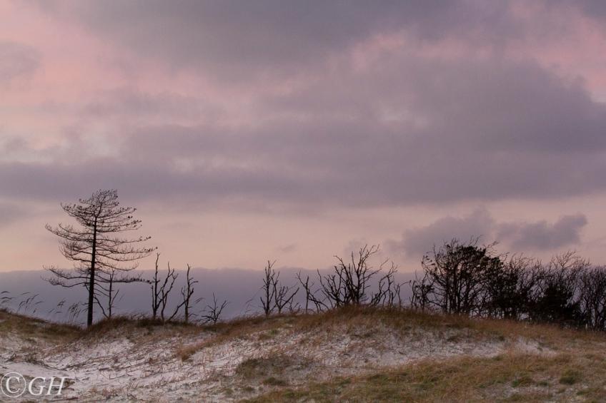 Sunset, 21 January 2020, Schoorl dunes